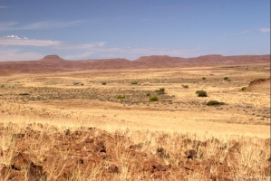 Plaine du Damaraland