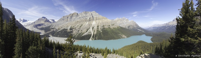 Pano Lac Peyto blended fused